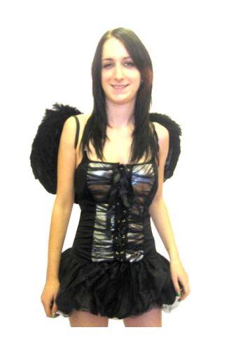 Dark Angel Costume with Wings