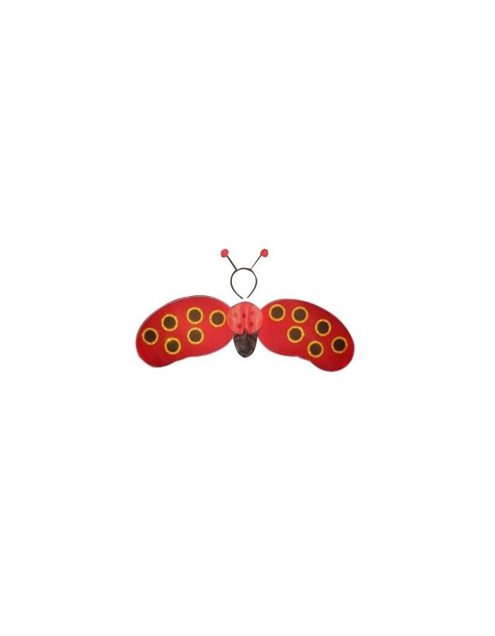 Lady Bird Fancy Dress Costume Wings